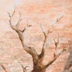 arbre - l'accompagnement - hommage à la personne agée - Hôpitaux de Toulouse