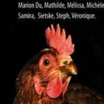 """CD spectacle """"Voleurs de poules"""" - Pochette / Galette / livret - 2010"""